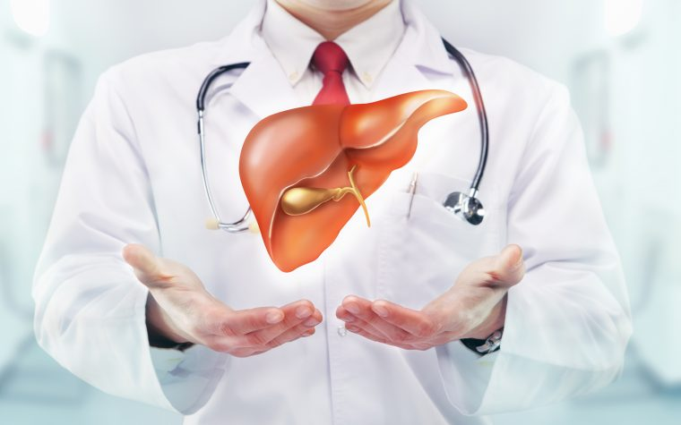 Liver protein identified that can lead to heart disease